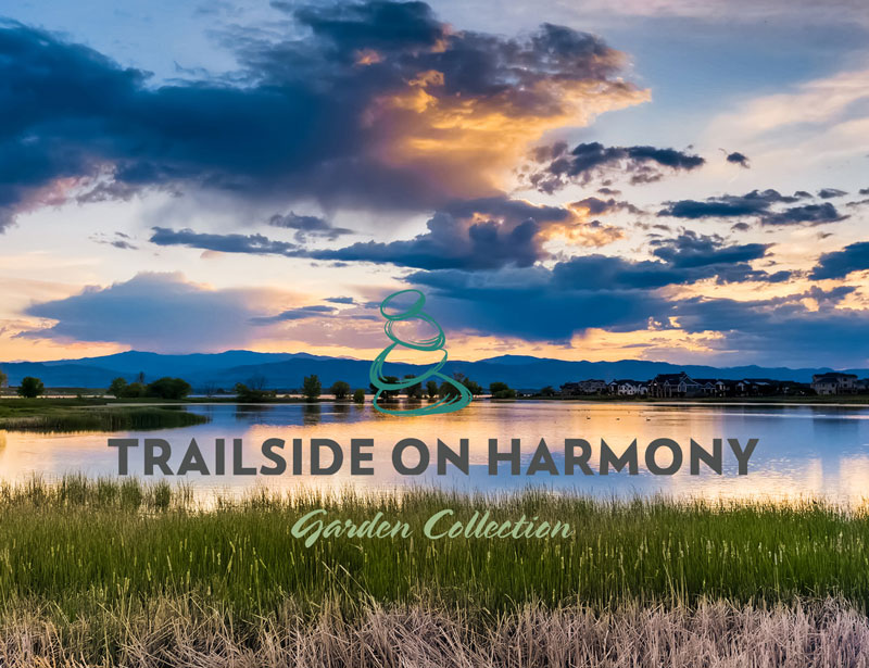 Garden Collection at Trailside on Harmony